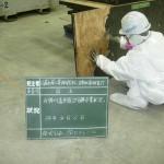 石綿の除去