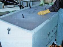 マリンボックスに入れたシャーベット氷内のマグロ